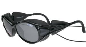 12. Темные очки Glacier, Dixon, 3 665 р.